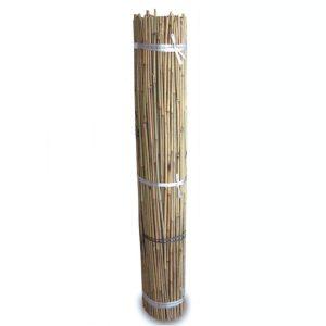 Tutores de Bambú 1,5m (500 und)